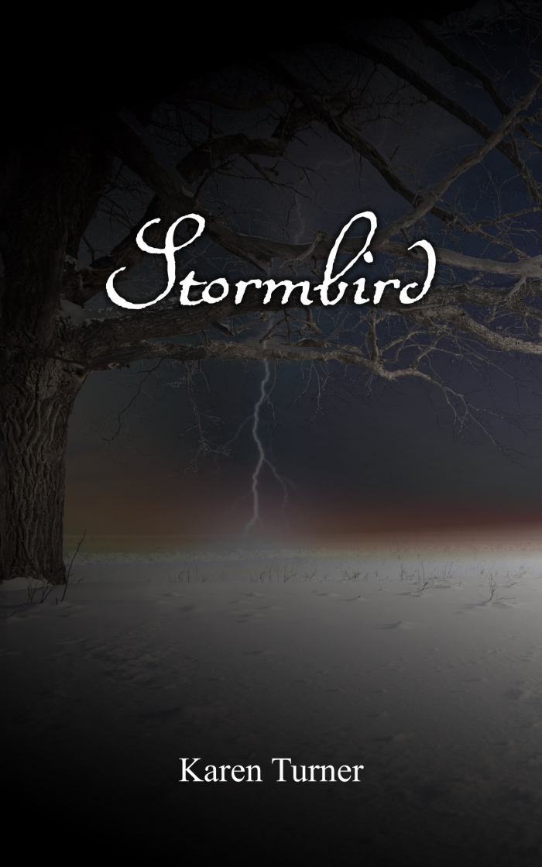 StormbirdCover